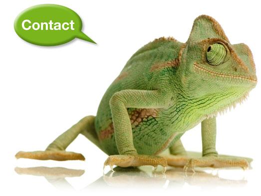 Kameleon-contactpag